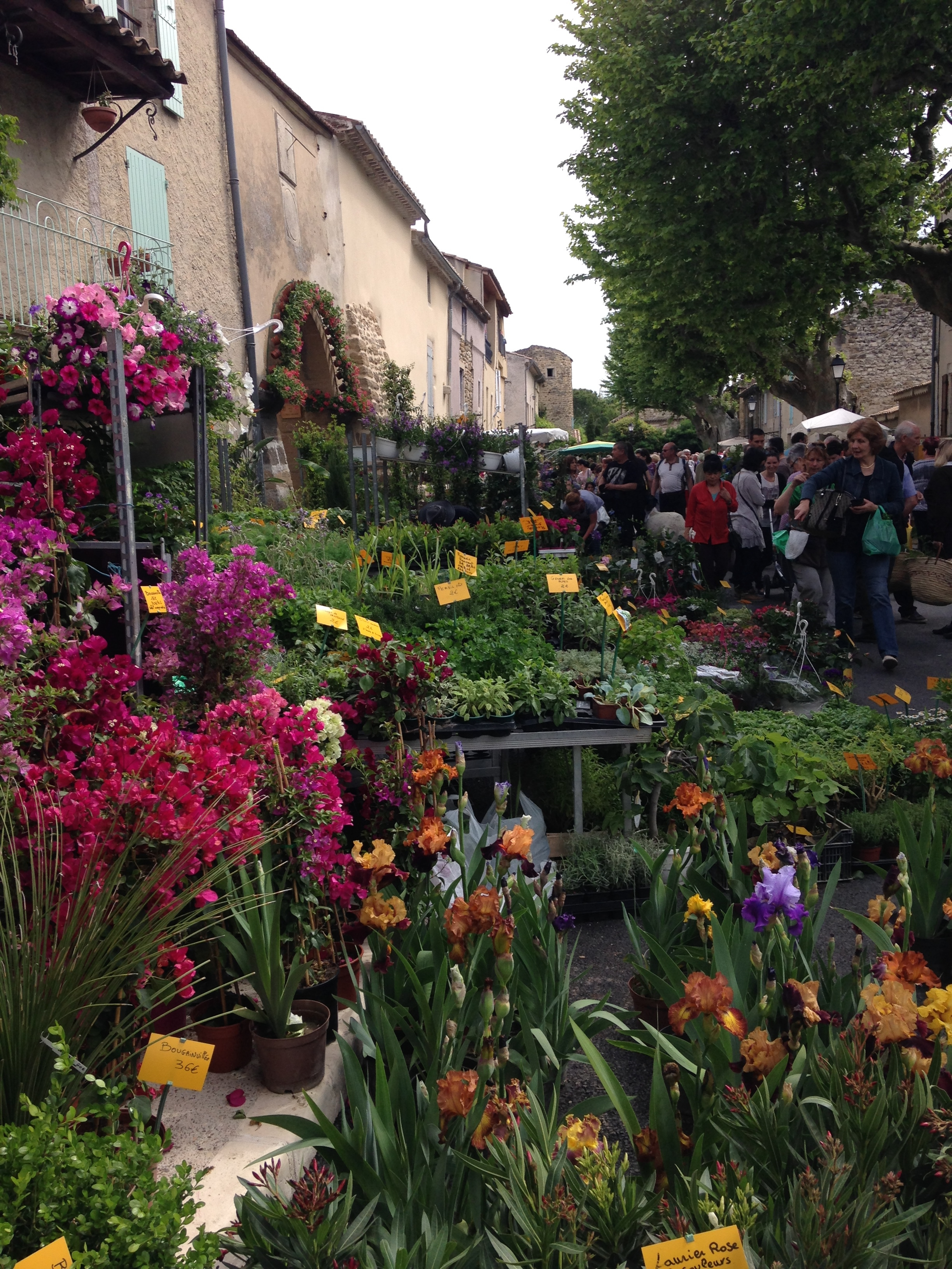 May Day Flower Fair in Richerenches | Le Mas de Maupas